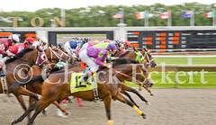 Passing Blur 3 (Chuck Eckert / Chicago & Beyond) Tags: park horse chicago field arlington race start many group running racing jockey