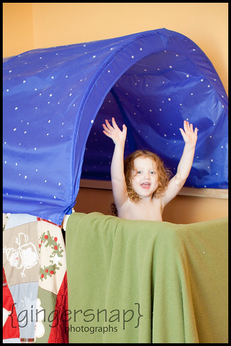 tent over bed2