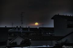 Dark Milan (Fil.ippo) Tags: sunset sun milan dark tramonto milano sole filippo timburton topaz d5000 sottoilcielodimilano marzo2011challengewinnercontest