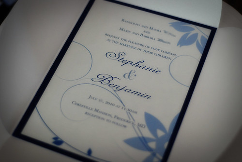 Blue and White Wedding Invitations share