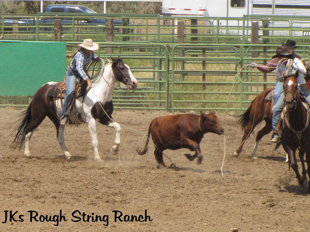The Gals Get Their Steer Roped