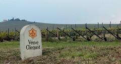 Weinanbaugebiet bei Verzenay, Champagne