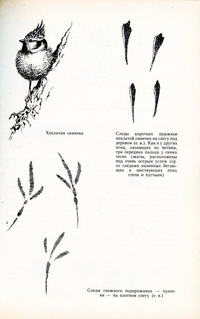 sputnik_page_001