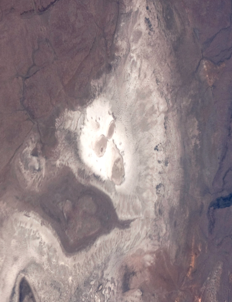Screaming Alien Goat Face on Nevada Desert