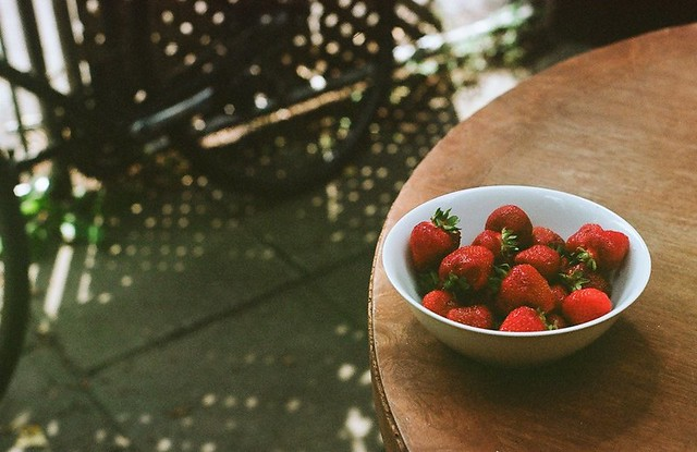 summer. berries.