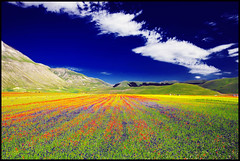 ...a beautiful day... (zio.paperino) Tags: flowers blue red sky italy mountain green nature beautiful yellow clouds fleurs landscape geotagged nikon europa europe italia day natura tokina cielo poppy poppies fiori umbria 1224 papaveri norcia castelluccio d90 ziopaperino mygearandme mygearandmepremium mygearandmebronze mygearandmesilver mygearandmegold mygearandmeplatinum