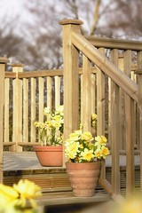 Traditional Stop Chamfered Deck (Richard Burbidge) Tags: decks decking deckrailing deckboards wooddecking gardendecking richardburbidge deckingbalustrade deckingrails deckingbalustrades