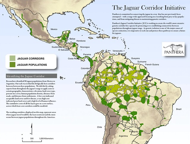 Map of the Jaguar Corridor Initiative