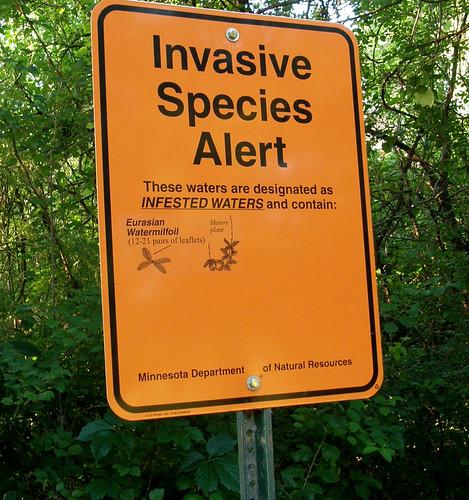 Species alert