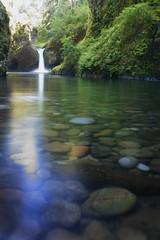 Punch Bowl Falls (nicoleio) Tags: blue trees tree green creek river waterfall eagle bowl columbia falls gorge punch columbiarivergorge eaglecreek punchbowlfalls