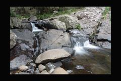 Double Streams (T. Harper) Tags: nature water canon rocks au qld streams cedarcreek 50d canonefs1785mmf456isusm