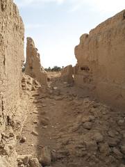 Beleida (I) (isawnyu) Tags: brick history archaeology wall ancient mud roman egypt oasis civilization settlement egyptology kharga beleida pleiades:depicts=776161