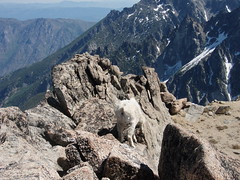 Not the view we wanted (Marmot19) Tags: mountaineering scrambling colchuck