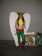 Hawkgirl Before DC Nation