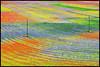 ...rural rainbow... (zio paperino) Tags: flowers light red italy flores color green nature fleur colors yellow rural fleurs landscape geotagged rouge rainbow nikon europa europe italia natura giallo poppy land fiori rosso umbria papaveri castelluccio d90 colorphotoaward ziopaperino mygearandme mygearandmepremium mygearandmesilver mygearandmegold
