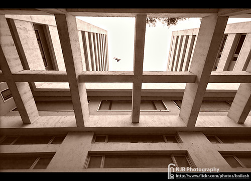 Bombay Hospital : Through The Grid