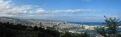 Panorámica de Barcelona desde Montjuïc