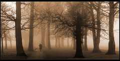Sherdley Walker-Shortlist. (Chrisconphoto) Tags: uk trees mist fog sepia walking sthelens merseyside chrisconway sherdleypark