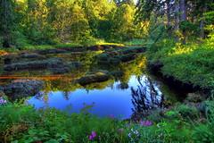 Crecent Creek