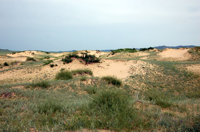 Moltsog Sand Dune, Khustain National Park 哈斯台國家公園