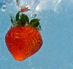 Splash 214/365 (tiahenriksen) Tags: action flickrchallengewinner 365shots etmooc 5cardetmooc