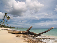 """Spiaggia di Santo Domingo • <a style=""""font-size:0.8em;"""" href=""""https://www.flickr.com/photos/21727040@N00/4859188904/"""" target=""""_blank"""">View on Flickr</a>"""
