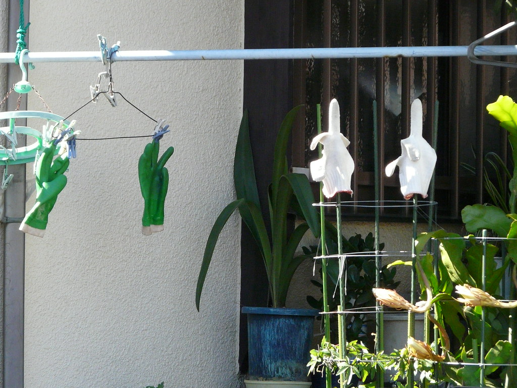 Glove Drying/Storage in Hanger and Potplant