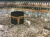 muslim_mosque_makkah_wallpaper (Davis Hartley) Tags: plant flower dan nature animal yang prophet islamic nabimuhammad langit alam bumi semesta renungan asmaallah islamicwallpapers islamicphoto namaallah keajaibanallah tausyahwordpresscomwallpper tausiyahwallpaper