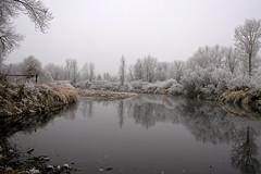 Hoar Frost on the Bitterroot (John Sieber) Tags: reflection river florence montana hoarfrost bitterrootriver