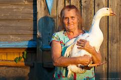 ANT_TTR2010_0929.jpg (AntonBalazh) Tags: people bird animal stpetersburg person russia goose oldwoman 2010 rus россия люди человек женщина птица животное гусь galich æåíùèíà ëþäè ðîññèÿ ÷åëîâåê ïòèöà галич старуха персона æèâîòíîå traveltorussia костромскаяобласть ïóòåøåñòâèåâðîññèþ ïåðñîíà путешествиевроссию ãàëè÷ êîñòðîìñêàÿîáëàñòü lyudmilakrylova людмилапавловнакрылова ëþäìèëàïàâëîâíàêðûëîâà ãóñü ñòàðóõà êîñòðîìñêàsîáëàñòü