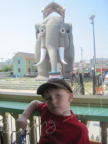 Joe Cool and his elephant