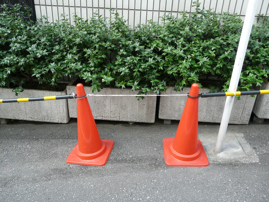 No Parking in Cones, String