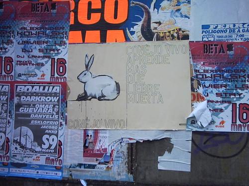 Conejo vivo aprende más que liebre muerta. Instalación urbana. by SUSO BASTERRECHEA