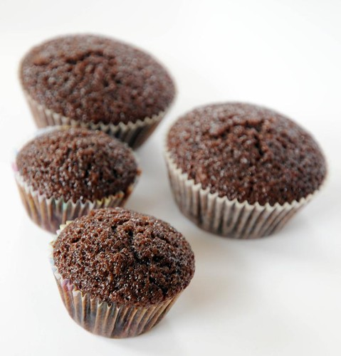 chocolatemuffins