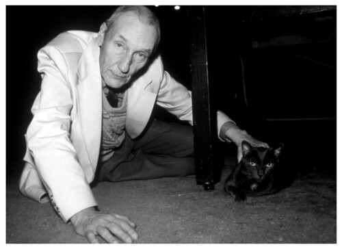 Kate Simon, print, Burroughs and cat