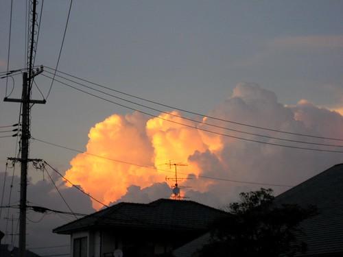 夏の夕焼け 画像2