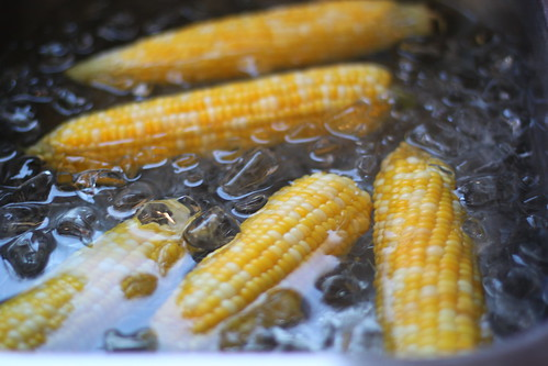 4906136725 47c4703f38 How to Freeze Corn