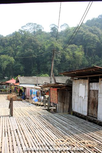 shacks on long house