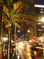 Queen st (Susana Fabian) Tags: light newzealand rain st night palm auckland qeen