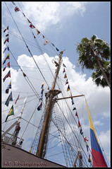 Gloria Skyward (Kelly D Photography) Tags: wood sea coastguard net water stairs port tampa boat wooden downtown ship tour child florida flag sails gloria columbia exhibit rope flags rings bow captain sail mast brass stern helm starboard braided channelside uscg capstan