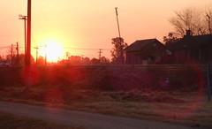 Atardecer (Anahi Temporelli) Tags: street trees light sunset sun luz sol argentina sunshine train way tren atardecer calle rboles camino olympus puestadesol casillas lateafternoon rayosdesol santotom mju9000