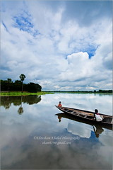 Tranquil Belai Bil (Ehtesham Khaled [www.ehteshamkhaled.com]) Tags: camera cloud lake reflection tree art water river lens boat cool nikon media crystal clear bil dhaka khaled depth ehtesham bangladesh bangla gazipur bpy advertise bangali banga belai parjaton sham619 gettyimagesbangladeshq3