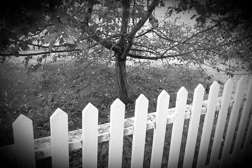 You white picket fence life