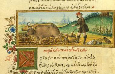 Vespae, Perdices et Rusticus