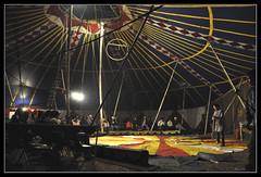 (buscandocaminos) Tags: circo papelito