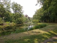 s'graveland (lhb-777) Tags: park light sun holland green water forest licht nice bomen rust groen view nederland bos zon pritty