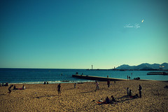 Cannes, the place where every star shines even more. (Anas Sya Bousquet) Tags: blue people mer france beach landscape sand cannes seagull sable bleu paysage plage mouette gens mditerrane