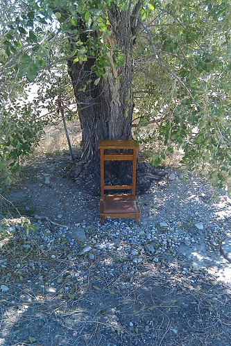 Kneeler Under a Tree