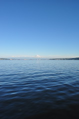"View (""Dawn"" of Photography by Mel) Tags: blue sky mountain water ferry boat jellyfish view ride surface h2o wa vashon mtrainer horizonline"
