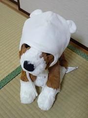 IKEAのわんちゃんにH&Mのあかちゃん帽子